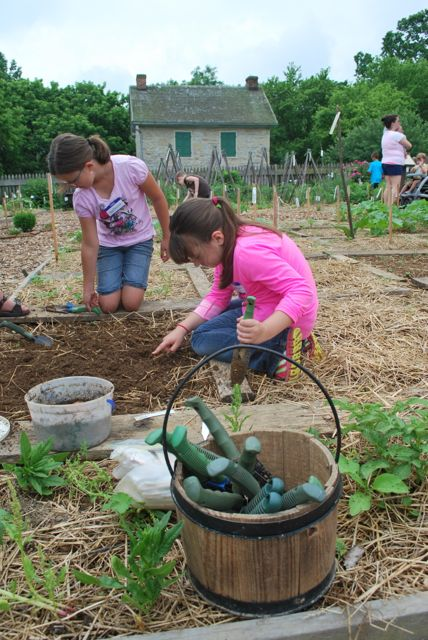 children planting in garden